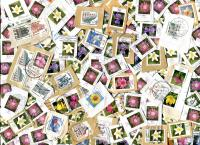 GERMANY:Germany only Higher Value EURO Definitives. Mostly closely clipped Flowers. About 110 per OZ.  Received APR 2021